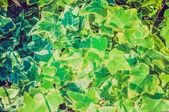 Листья плюща ретро — Стоковое фото
