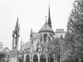 Notre Dame Paris — Stockfoto