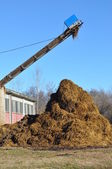 Heap of manure — Stock Photo