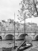 Ile de la Cite Paris — Stock Photo