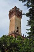 Castello del Roccolo in Caraglio — Stock Photo