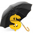 Money Protection Concept. Golden Dollar Sign under Umbrella — Stock Photo #29104293