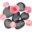 Black spa stones and pink rose with petals isolated on white — Stock Photo #12445198