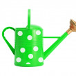 Green with white polka dot watering can isolated on white — Stock Photo