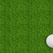 Golf ball on green grass of golf course — Stock fotografie #41095809