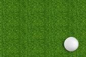 Pelota de golf en el verde césped del campo de golf — Foto de Stock