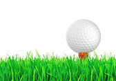 Golf ball on the green grass of the golf course — Stok fotoğraf