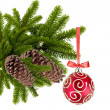Christmas ball on the tree isolated on white background — Stock Photo #7975166