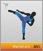 Martial arts — Stockvektor