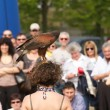 Falconry — Stock Photo