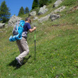 Trekking — Stock Photo #30147055