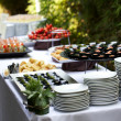 Fingerfood — Stockfoto