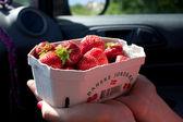 Deense aardbeien mand — Stockfoto