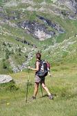 Woman hiker — Stock Photo