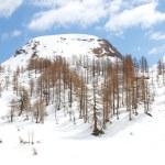 Alpe Devero - Italy — Stock Photo #44694521