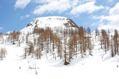 Alpe Devero - Italy — Stock Photo