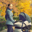 Young mother with a pram on a walk in autumn — Stock Photo