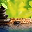 Green eco background with spa stones and leaves with water — Stock Photo