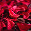 Royalty-Free Stock Photo: Spa background of dried petals of red roses
