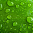 Stock Photo: Green abstract background. drops of dew on a leaf