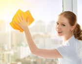 Happy girl housewife washes a window — Stok fotoğraf