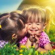 Happy girls twin sisters kissing and laughing in the summer outd — Stock Photo #29691373