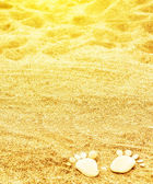Footprints of stones on yellow sand on the beach in summer — Stock Photo