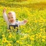 Постер, плакат: Baby girl on a green meadow with yellow flowers dandelions on th