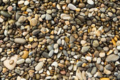 Pebbles and stones, wet, texture, background — Stock Photo