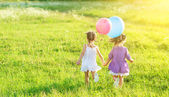Happy girls twin sisters  with balloons in summer field on nature — Stock Photo