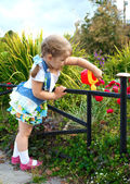 Little girl paint colors on the leaves of the tree — Stock Photo
