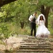 Newly-married couple go down on an old stair — Stock Video