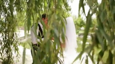 Ground married pair hugs and kisses under a large willow — Stock Video