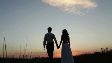 Bride and groom go into the sunset — Stock Video