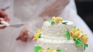 ウエディング ケーキの切断 — ストックビデオ