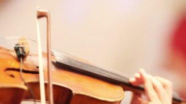 Spelen van de viool — Stockvideo