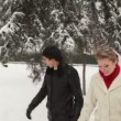 Newlyweds walking together in a snowy winter park — Stock Video