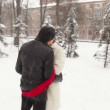 Entwined with a red scarf, a couple kissing in the snow-covered park — Stock Video