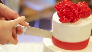 Cutting the wedding cake — Stock Video