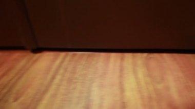 Kamera na dolly se pohybuje kolem polí snubní prsteny — Stock video