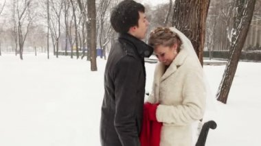 In the winter the park blows the bride groom snow. She kisses him — Stock Video