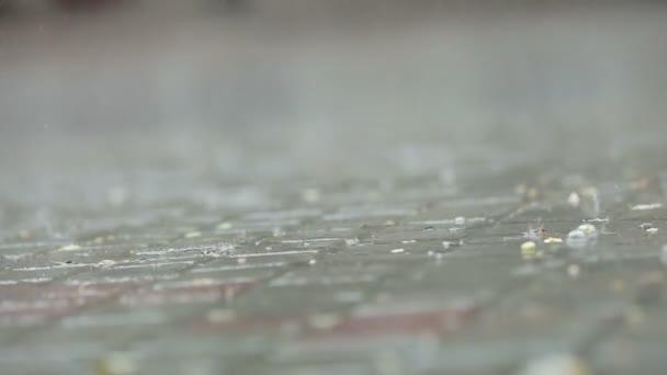 La lluvia en la ciudad — Vídeo de stock