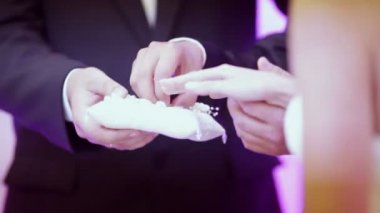Groom puts the ring on the brides finger. — Stock Video