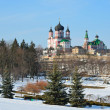 der Feofaniya-Park im winter — Stockfoto