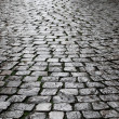 Wet cobbles of block pavement — Stock Photo