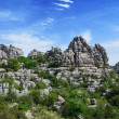 Impressive karst landscape — Stock Photo #14030060