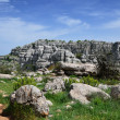 Stock Photo: Impressive karst landscape