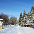 Winter park in Truskavets — Foto Stock