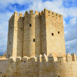 Calahorra tower in Cordoba - Stock Photo