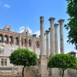 Ancient columns near the City Hall in Cordoba — Stock Photo